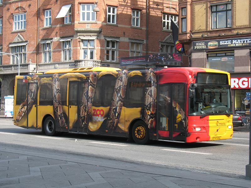 Divovska Boa konstriktor steže bus na sredini kolovoza - reklamiranje firme