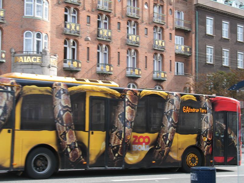 Impozantni Piton steže bus baš ispred hotela Palace - reklamiranje firme