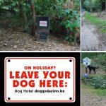 Napušteni pseći bilbordi u šumi: gde reklamirati firmu Doggyday Inn i uslugu čuvanja pasa